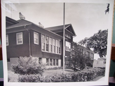 100_1931